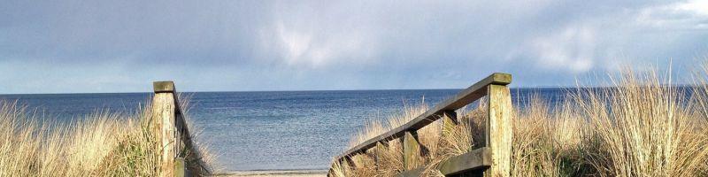 Wyjątkowa plaża w Krynicy Morskiej