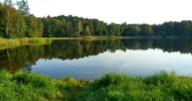 Plaża naturystów w Mikołowie nad Zbiornikiem Starganiec