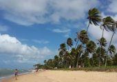 Praia do Forte (Bahia), Brazil
