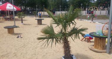 Plaża w Sztolni Królowa Luiza w Zabrzu